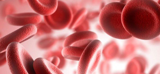 Sociedad Chilena de Hematología: Falta de especialistas y patologías complejas