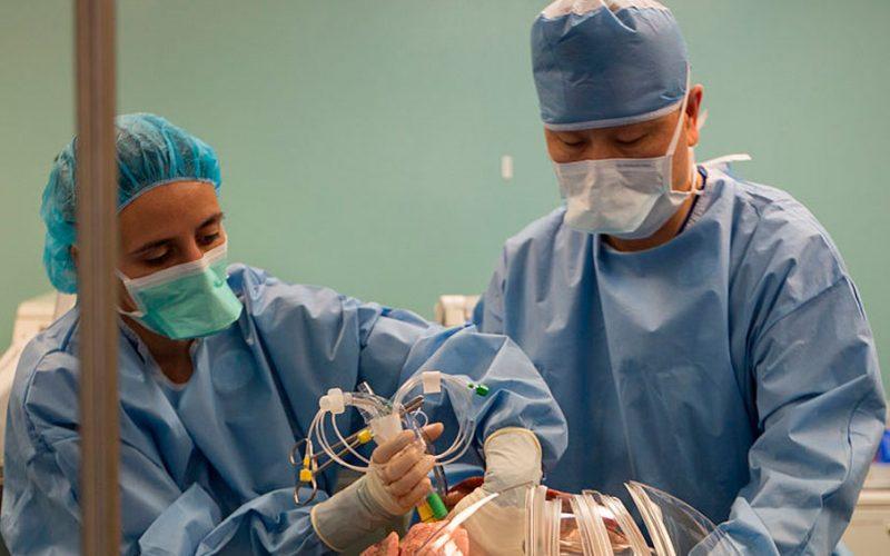 Transplante: Innovadora técnica reacondiciona pulmones dañados
