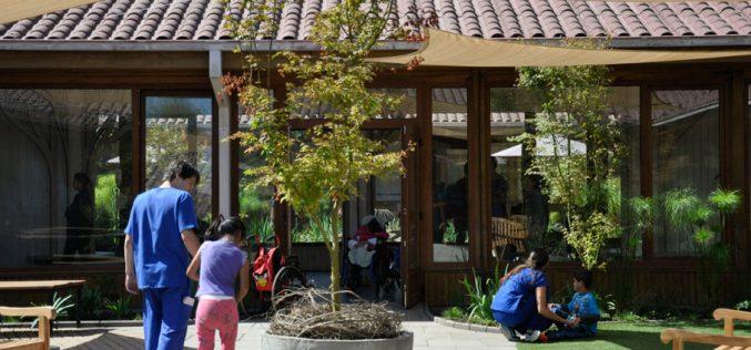 Jardines terapéuticos: Terapia natural y sanadora