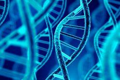 Medicina de precisión: Diagnósticos y terapias a la medida