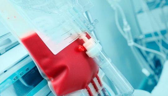Acceso: Nuevas estrategias en trasplante hematopoyético