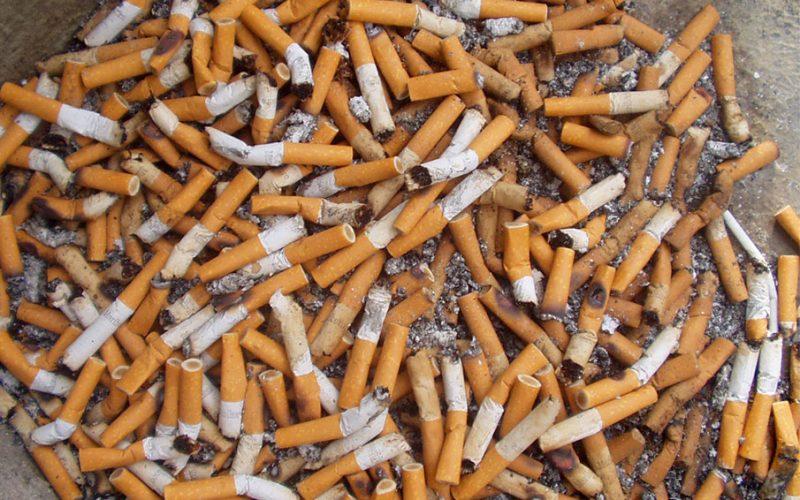 Tabaquismo y la enfermedad pulmonar obstructiva crónica