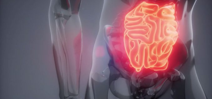 Cáncer gástrico y cáncer de vesícula: en Chile en las comunas del Maule hacia el sur presentan mayor riesgo de muerte