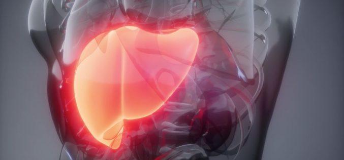 Sociedad Chilena de Gastroenterología destacó el aporte de los ganadores del Premio Nobel de Medicina en el tratamiento de la Hepatitis C en Chile