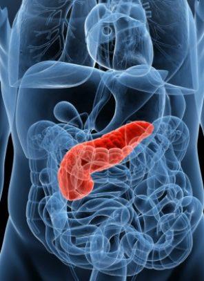 Inédito congreso de pacientes con enfermedades digestivas